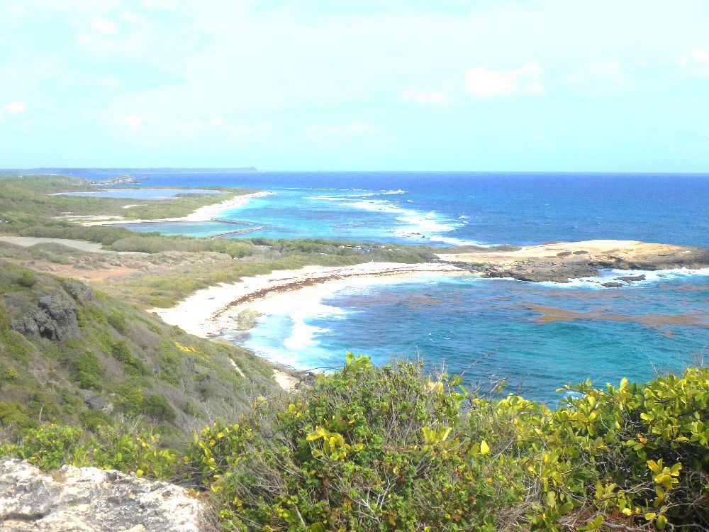 La plage des Saline en Guadeloupe, proche de la pointe des Châteaux